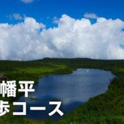 【秋田県】八幡平は春から夏にかけてトレッキングが楽しめるおすすめスポット! 高山植物も見頃!