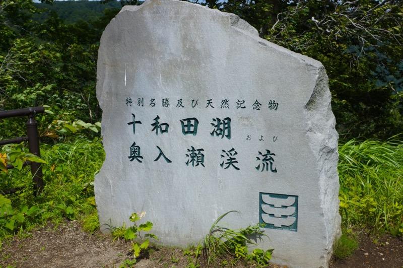 十和田湖・奥入瀬渓流 (8)