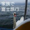 河口湖周辺や富士サファリパークの観光施設 まとめ
