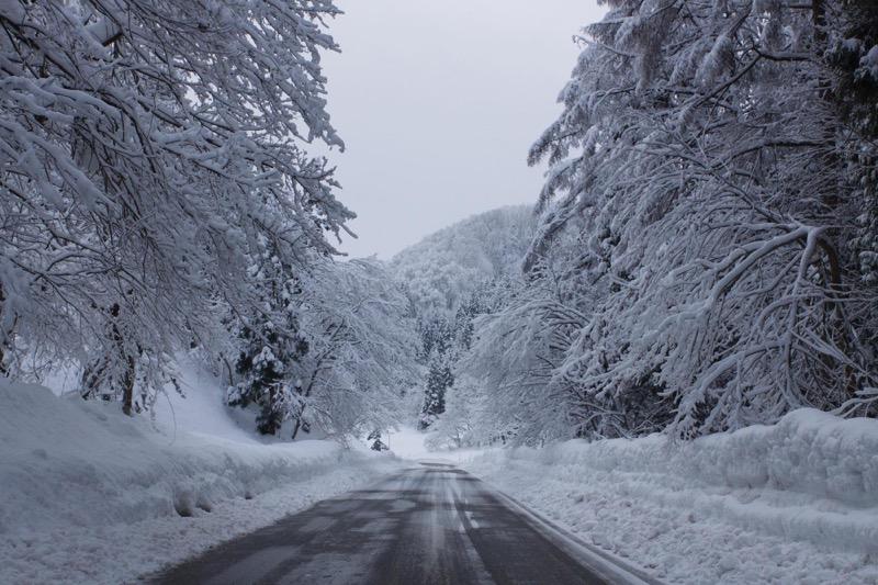 th_冬の峠道06