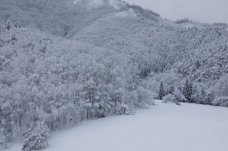 th_冬の峠道07