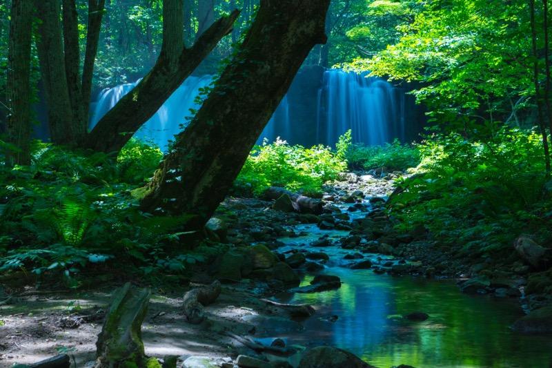 奥入瀬渓流の撮影テクニック
